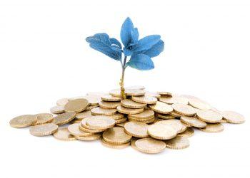 Grafferson - Planificacion de inversiones y negocios